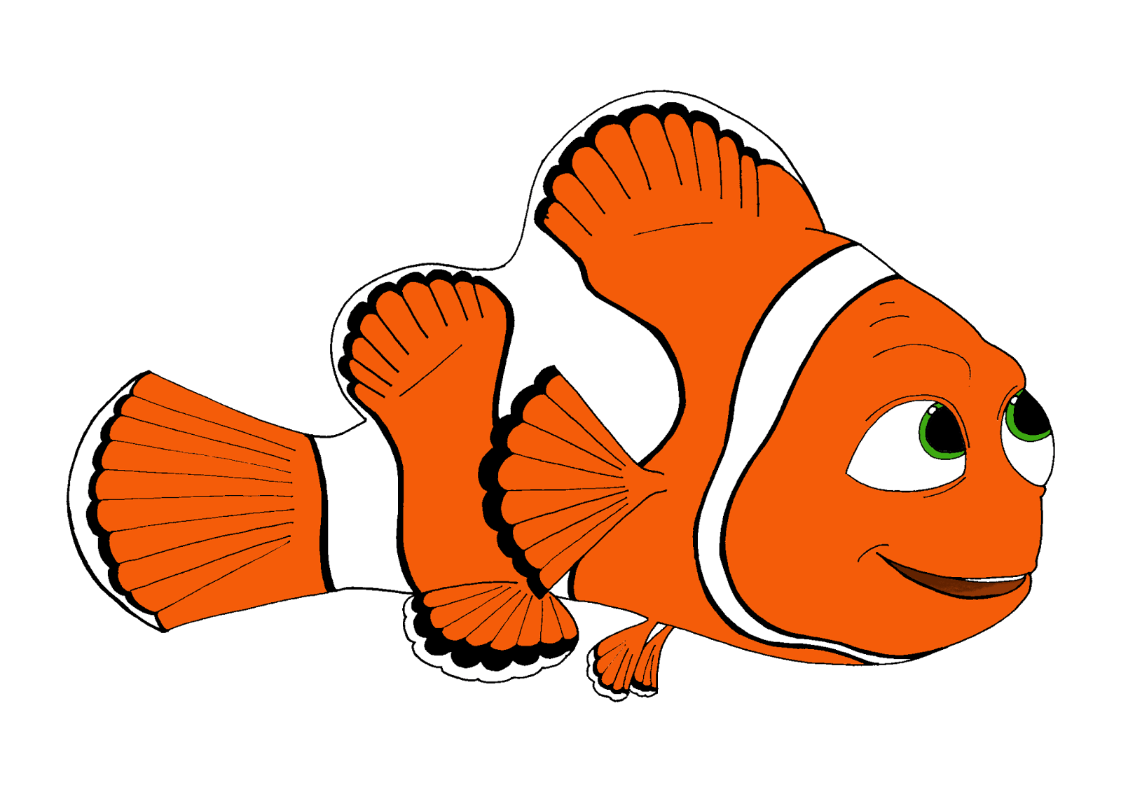 Educação Ambiental N'a Rocha  À Procura De Nemo