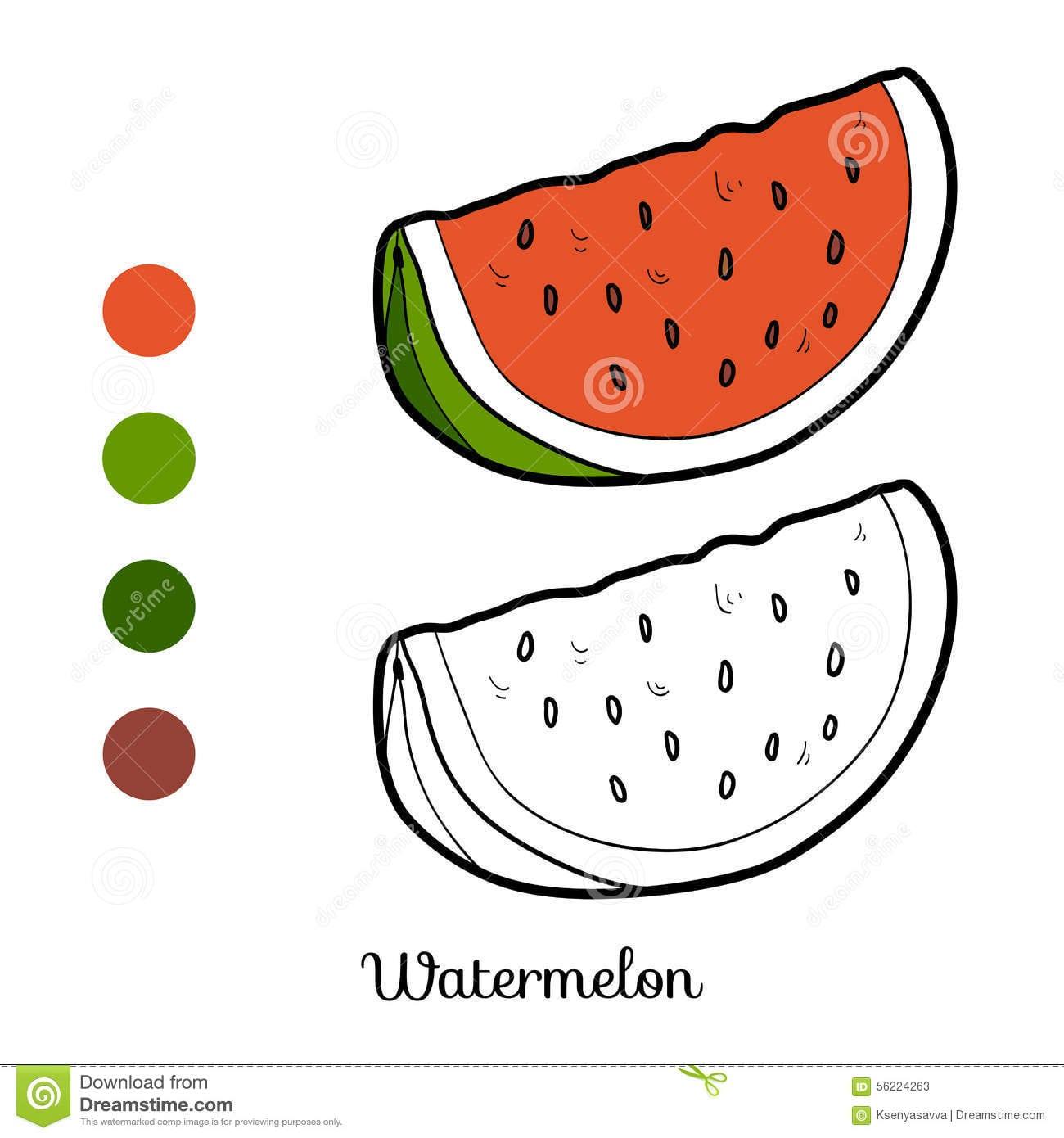 Livro Para Colorir  Frutas E Legumes (melancia) Ilustração Do