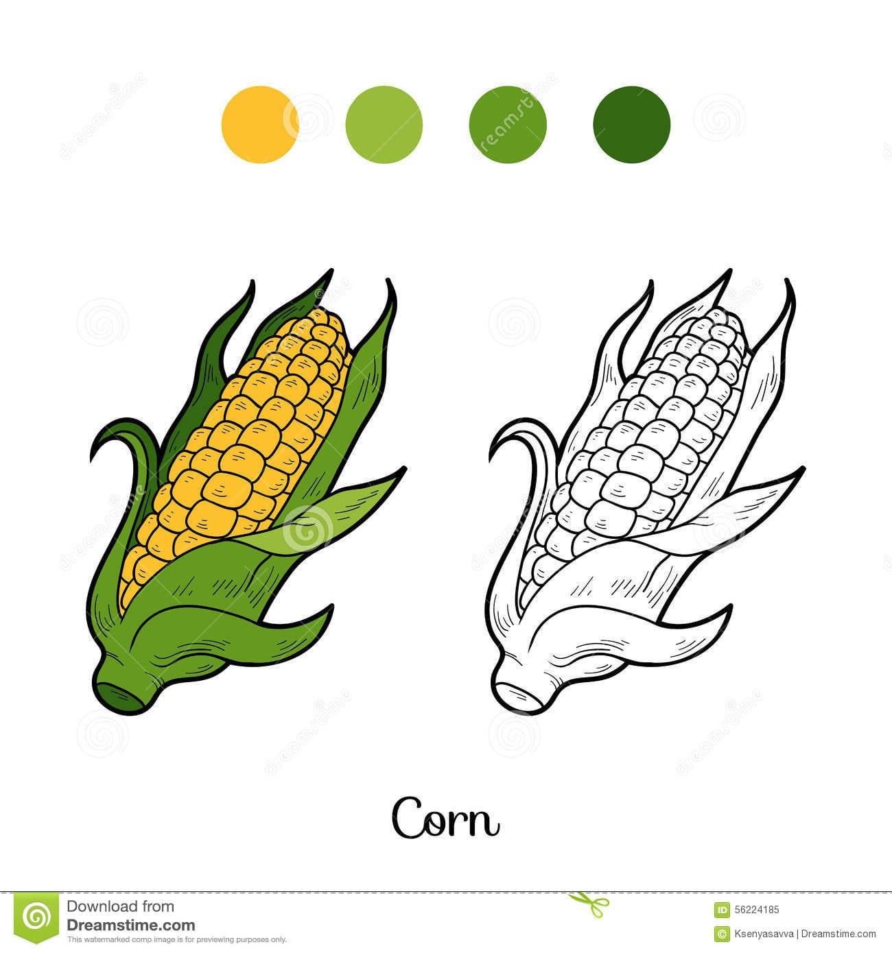 Livro Para Colorir  Frutas E Legumes (milho) Ilustração Do Vetor