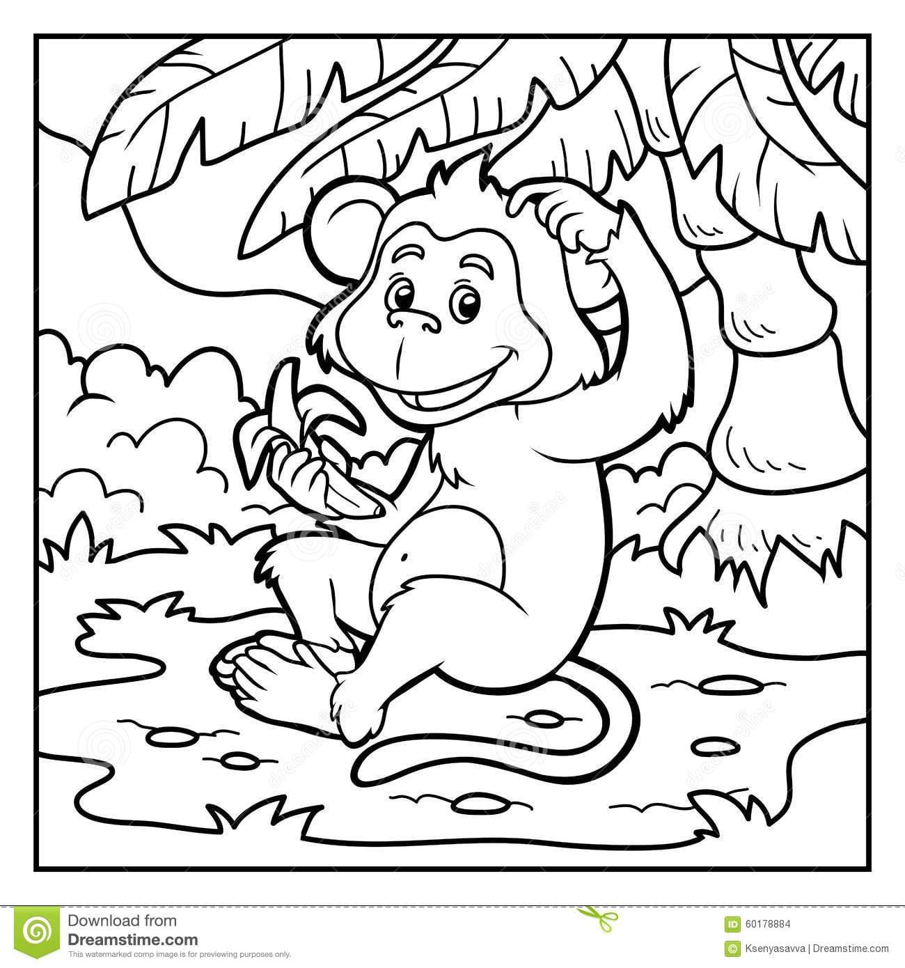 Livro Para Colorir  Macaco Pequeno Com Uma Banana Ilustração Do