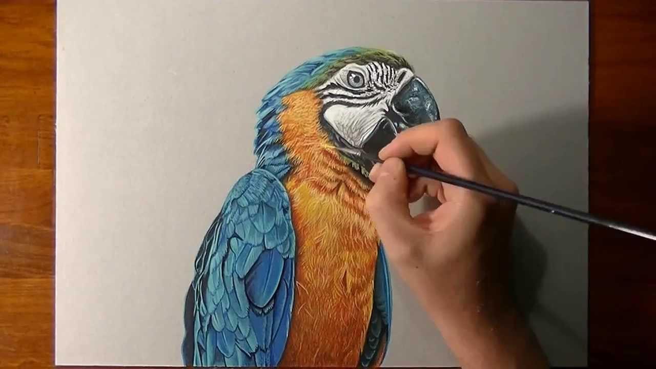 artista_italiano_cria_desenhos_realistas_capazes_de_confundir_o_0.jpg