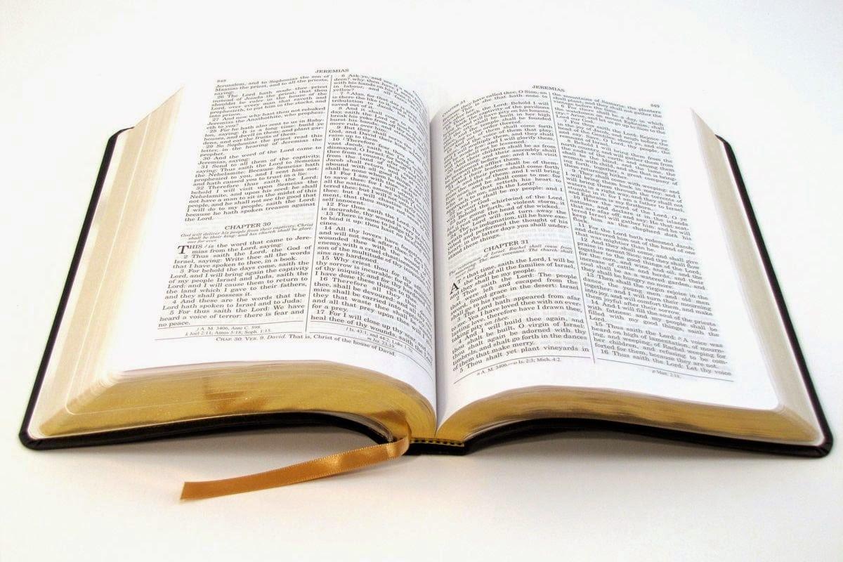 Blog Do Widemar  Para Nossa Meditação Salmos 21