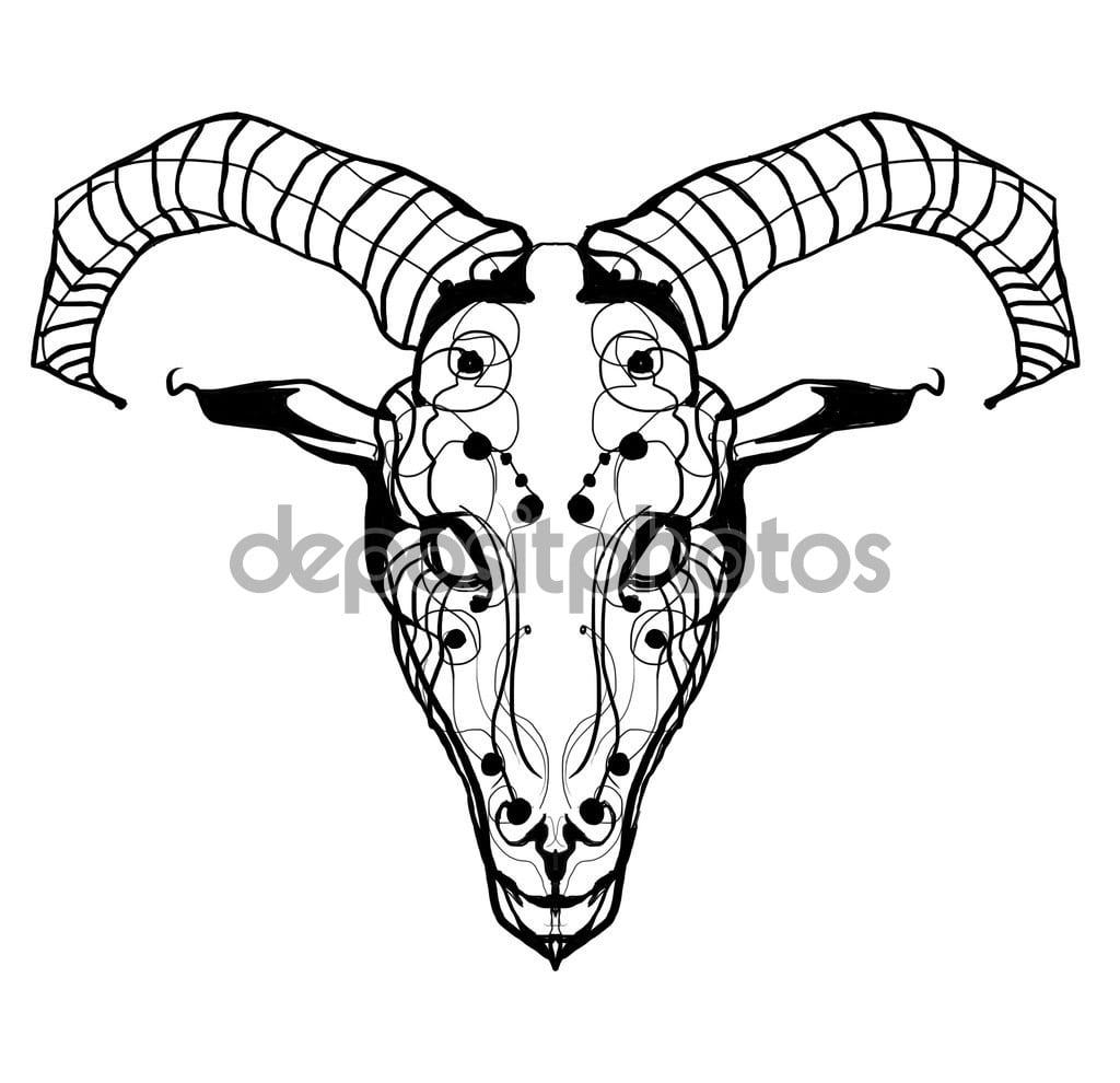 Cabeça De Cabra — Fotografias De Stock © Helendream  56238009