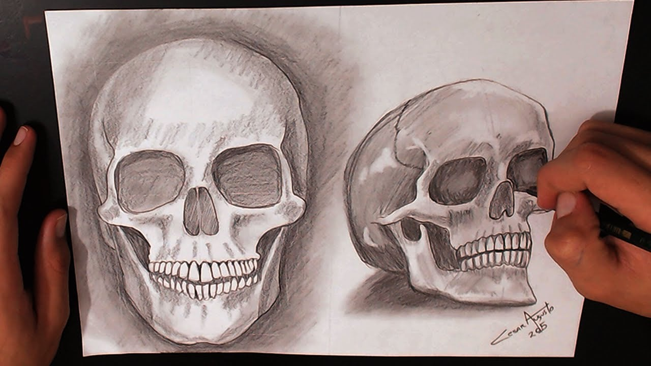 Como Desenhar Caveiras (how To Draw Skulls)