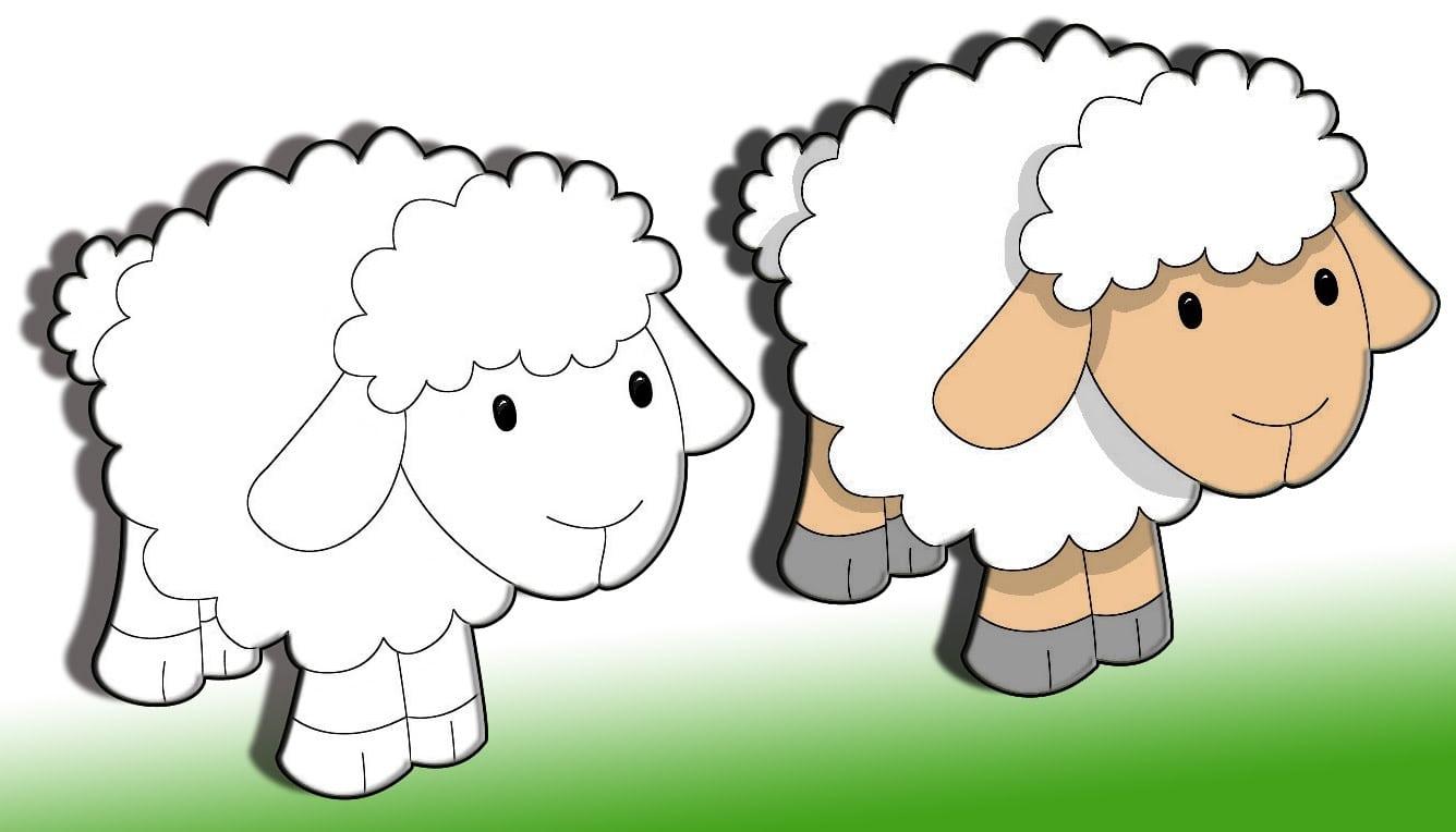 Como Desenhar Uma Ovelha 2015