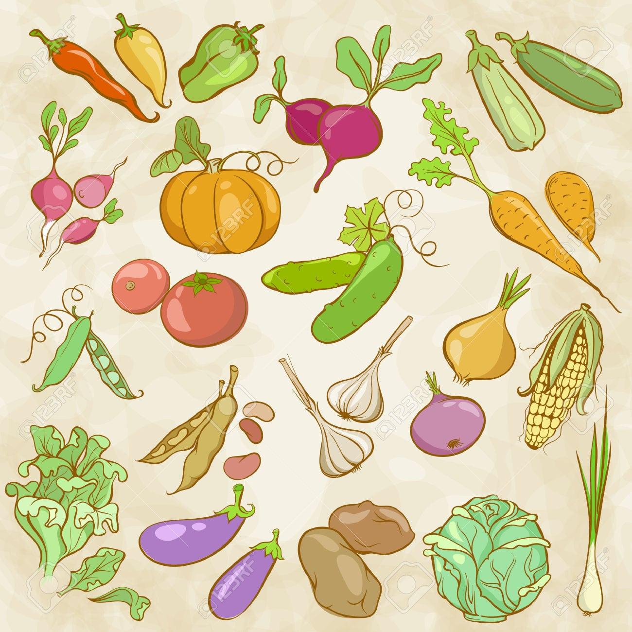 Desenho De Contornos Coloridos De Legumes Royalty Free Cliparts