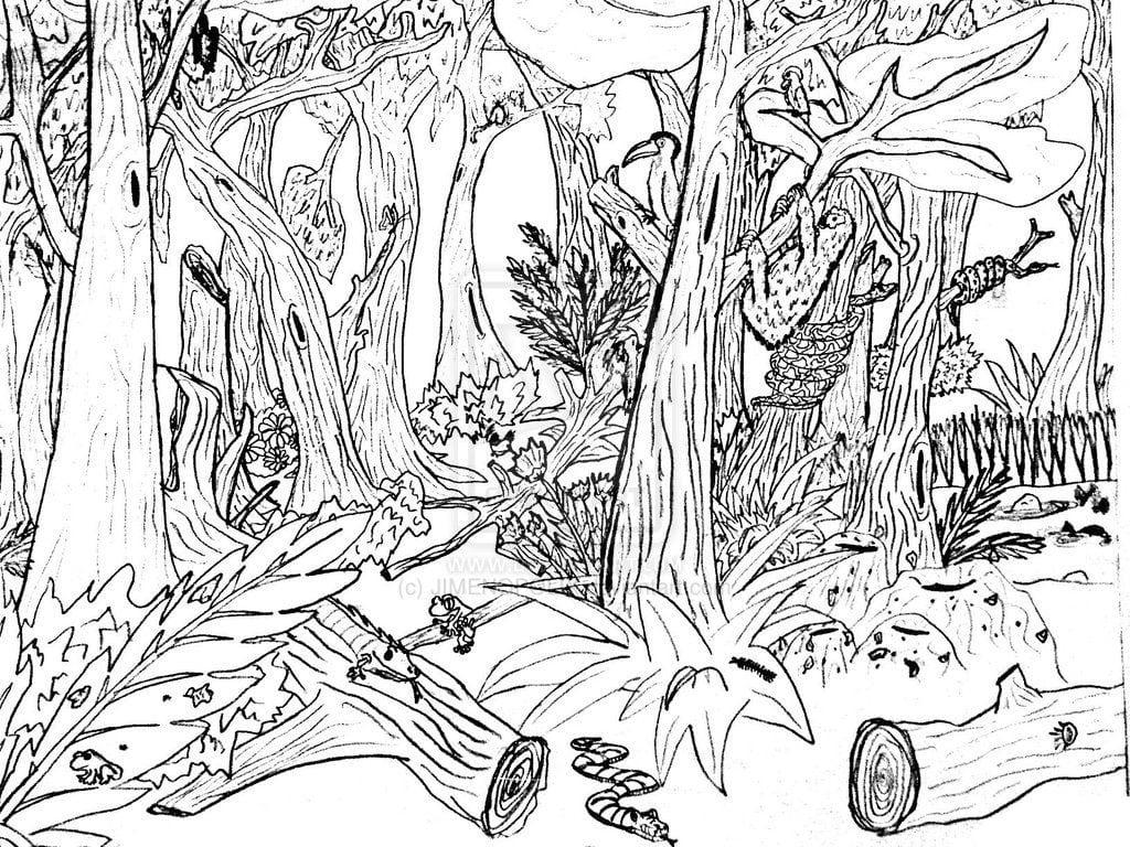 Desenho De Desmatamento Na Floresta Para Colorir