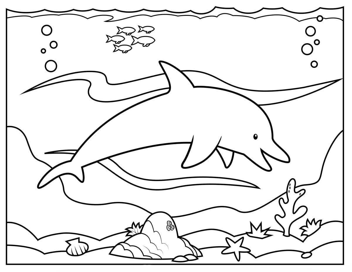 Desenho De Golfinho No Fundo Do Mar Para Colorir