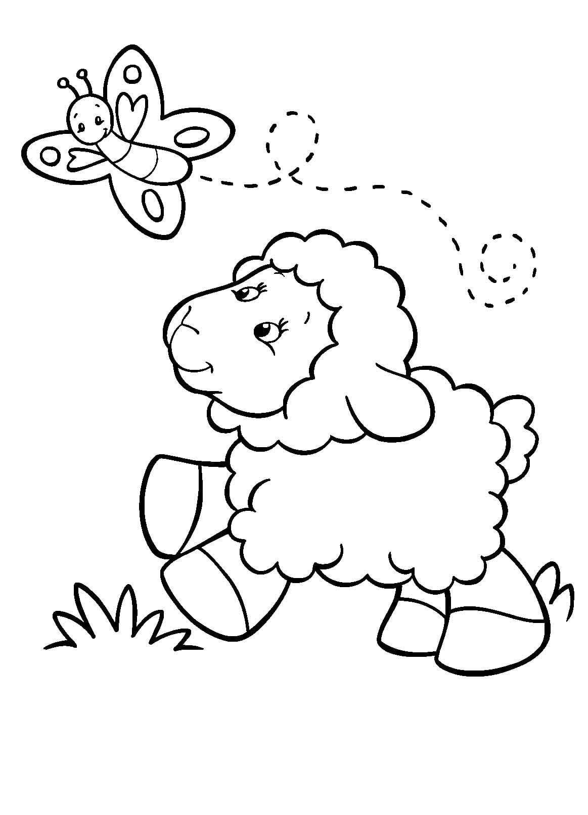 Desenho De Ovelha E Borboleta Para Colorir