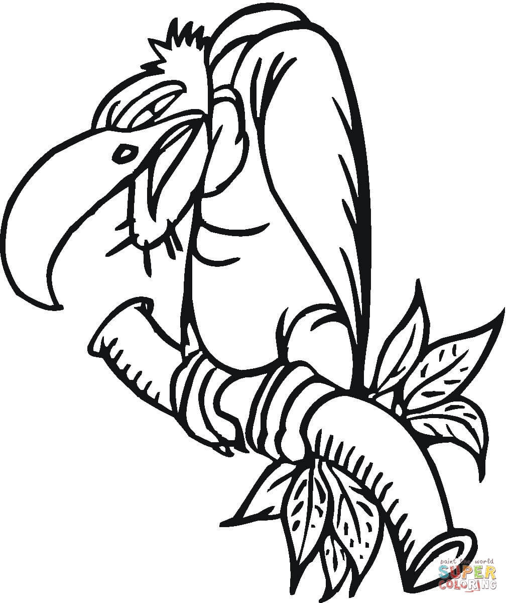 Desenho De Urubu Mau Para Colorir