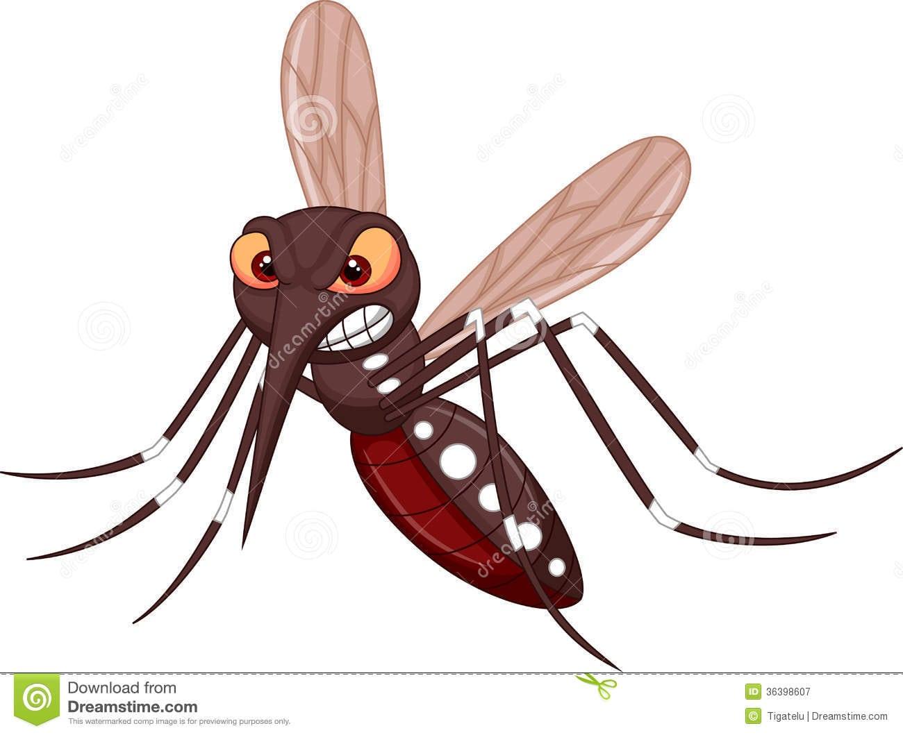 desenho do mosquito da dengue