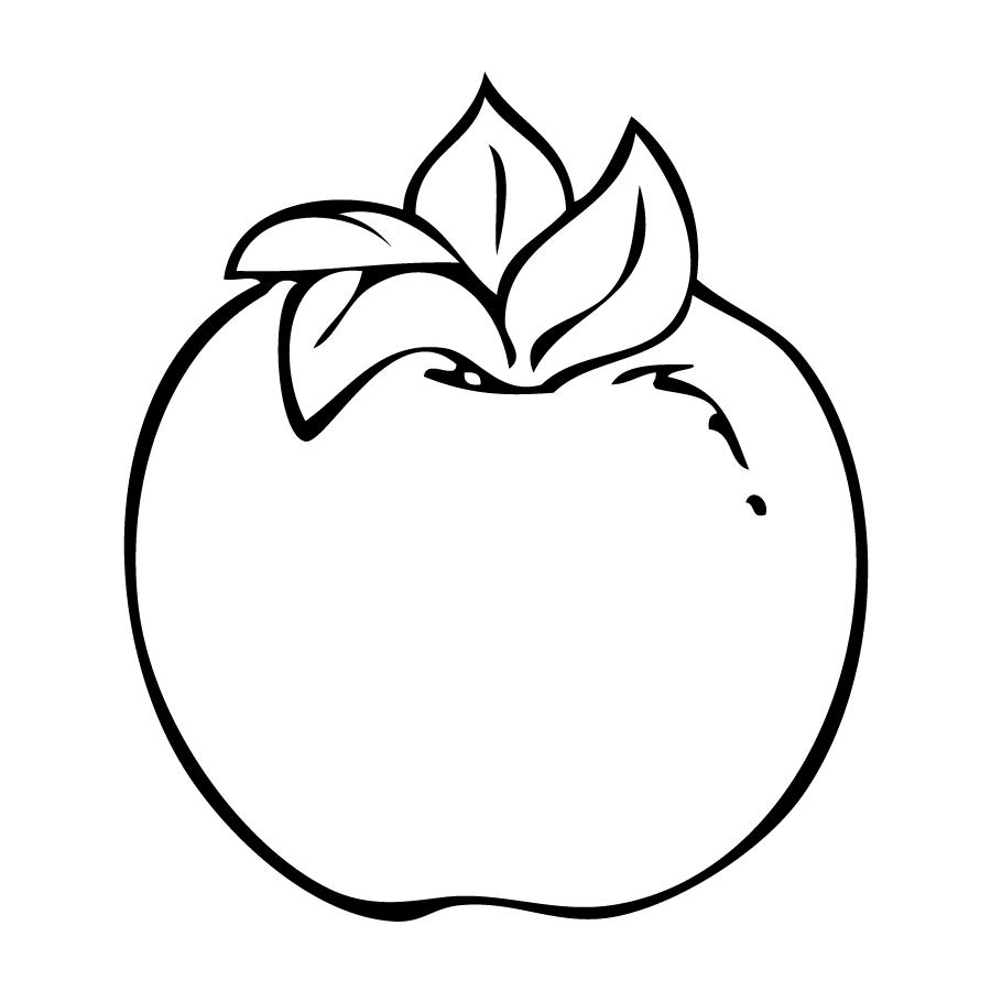 Desenhos De Caqui Fruta Para Colorir, Pintar, Imprimir