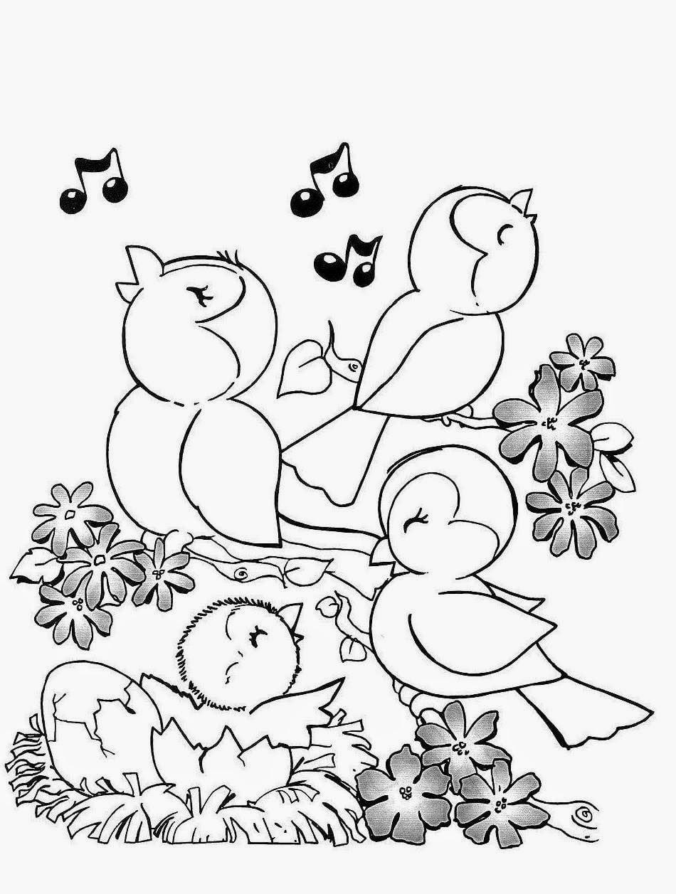Desenhos De Pássaros Para Imprimir E Colorir