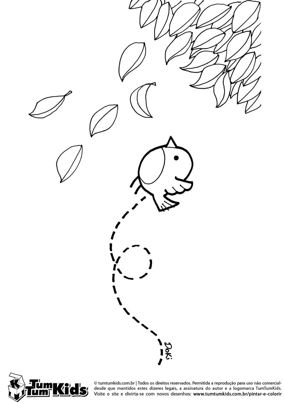 O Passarinho E As Folhas