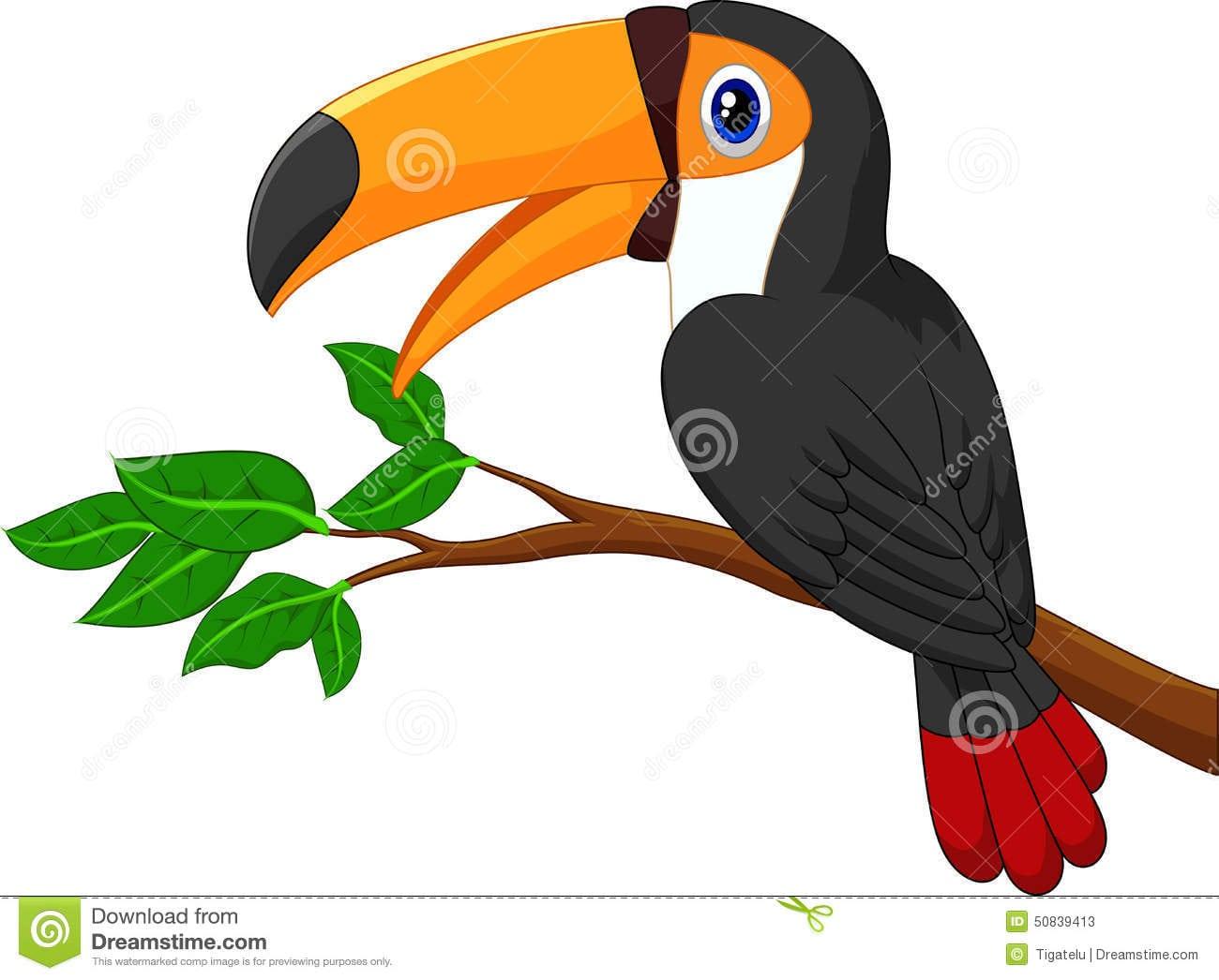Tucano Desenho 32938