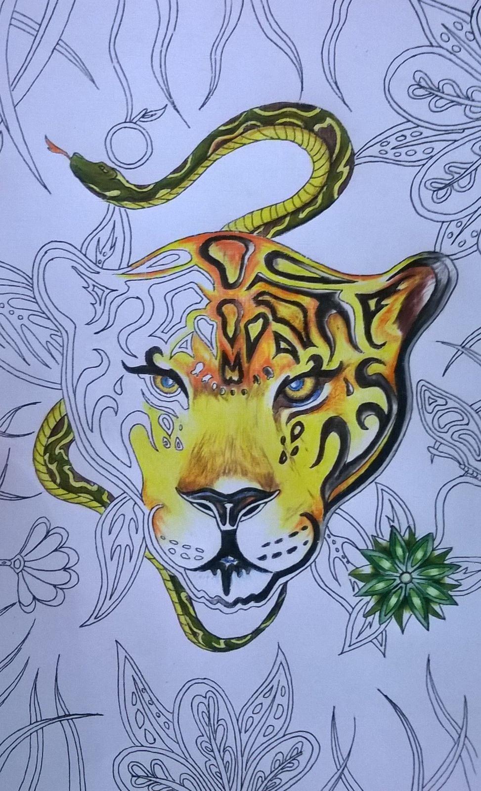 Amigos Criam Livro Para Colorir Com Ilustrações Do Pantanal