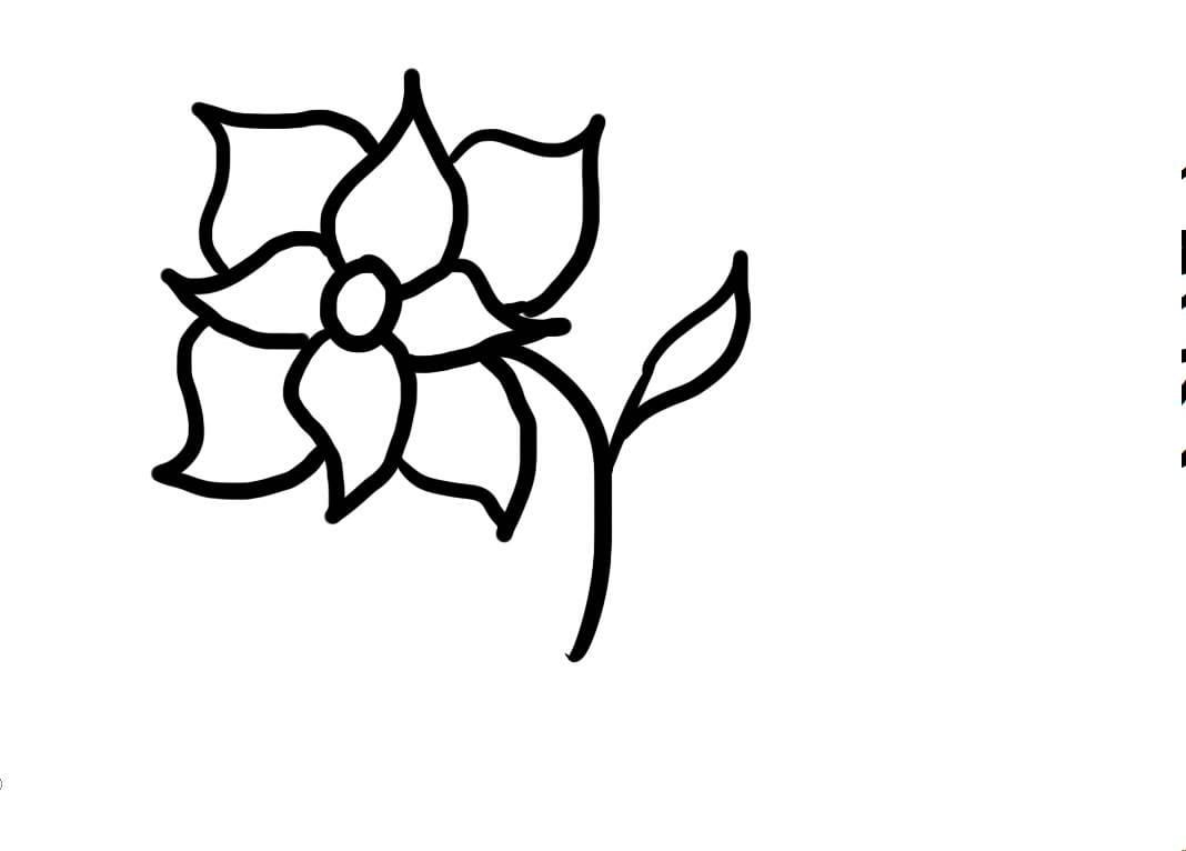 Aprenda A Desenhar Uma Flor
