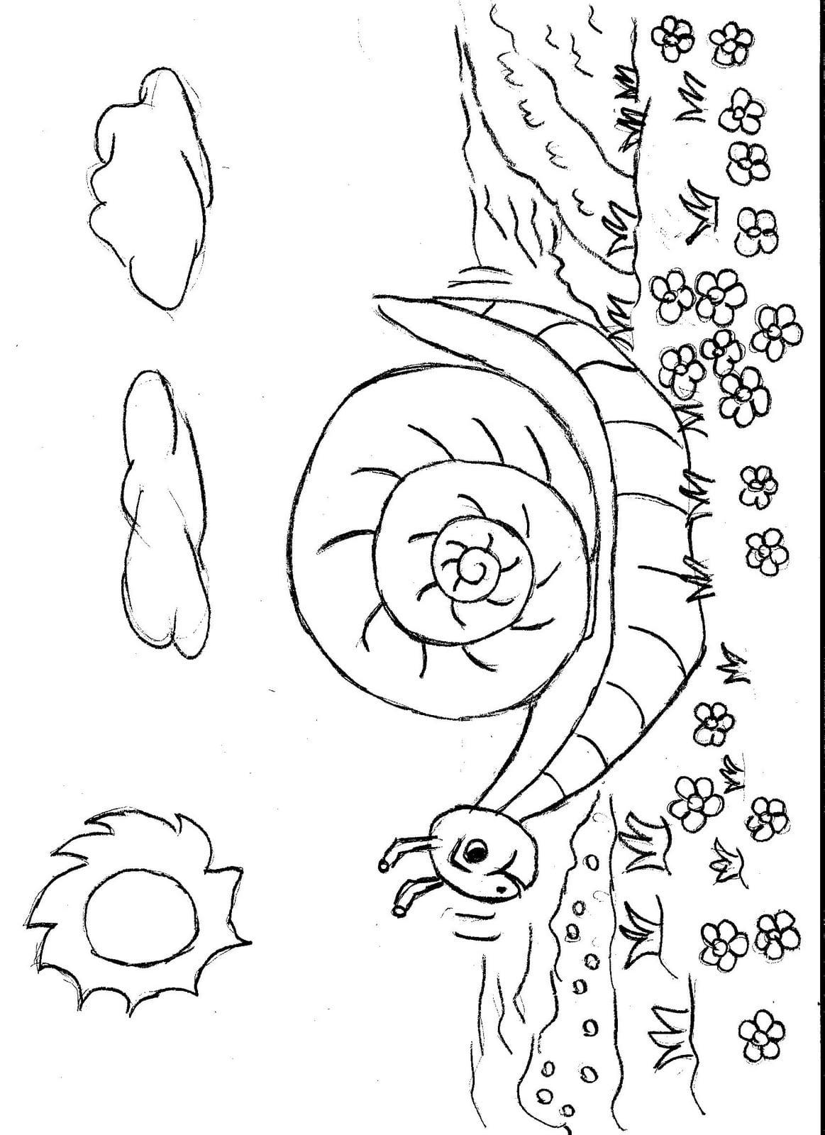 Desenhos Da Primavera