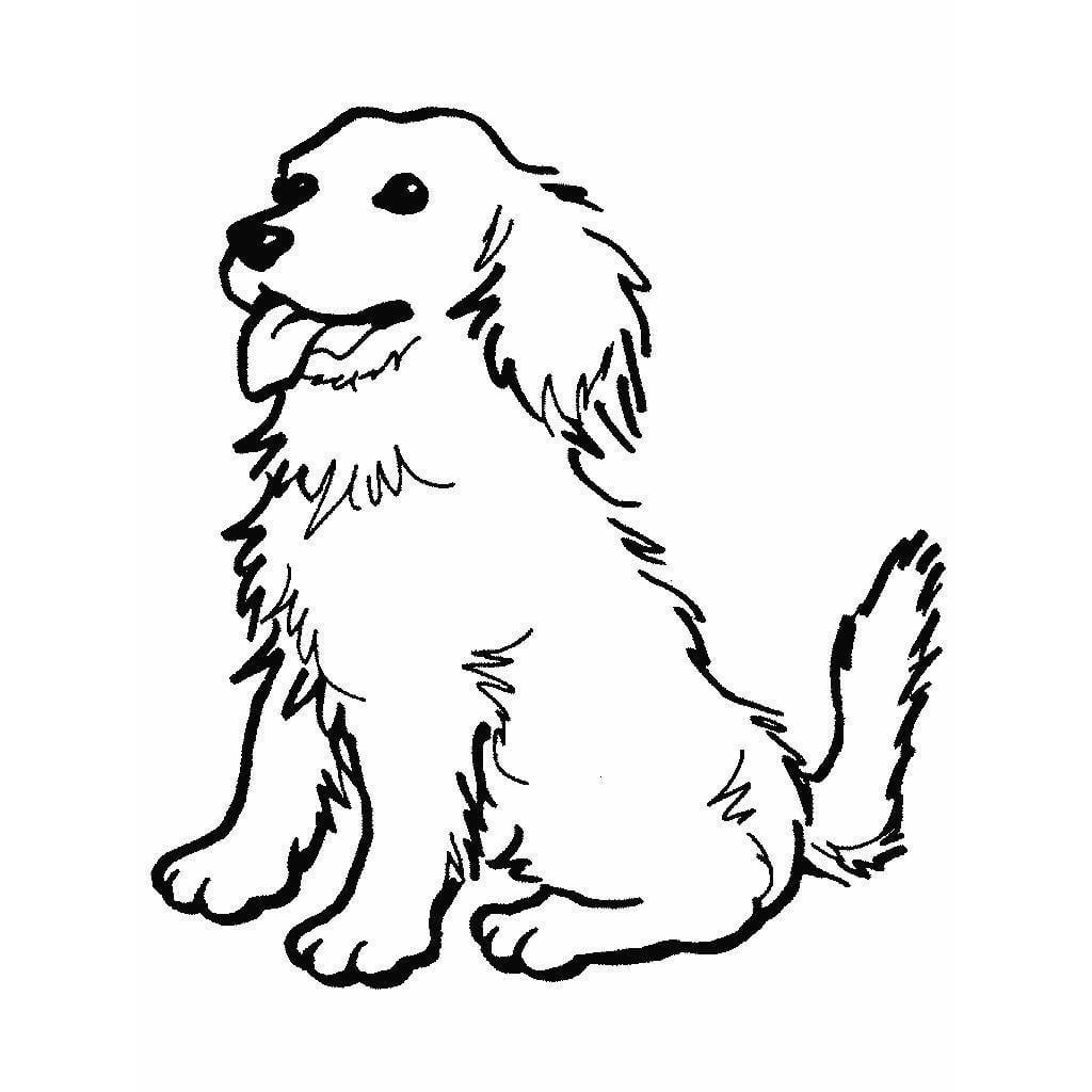 Desenhos De Cachorros Para Colorir