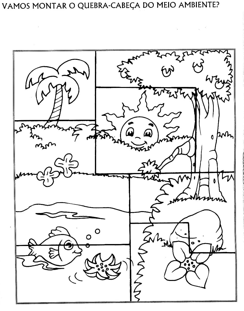 Jornal Ponto Com  Desenhos E Atividades Sobre O Meio Ambiente