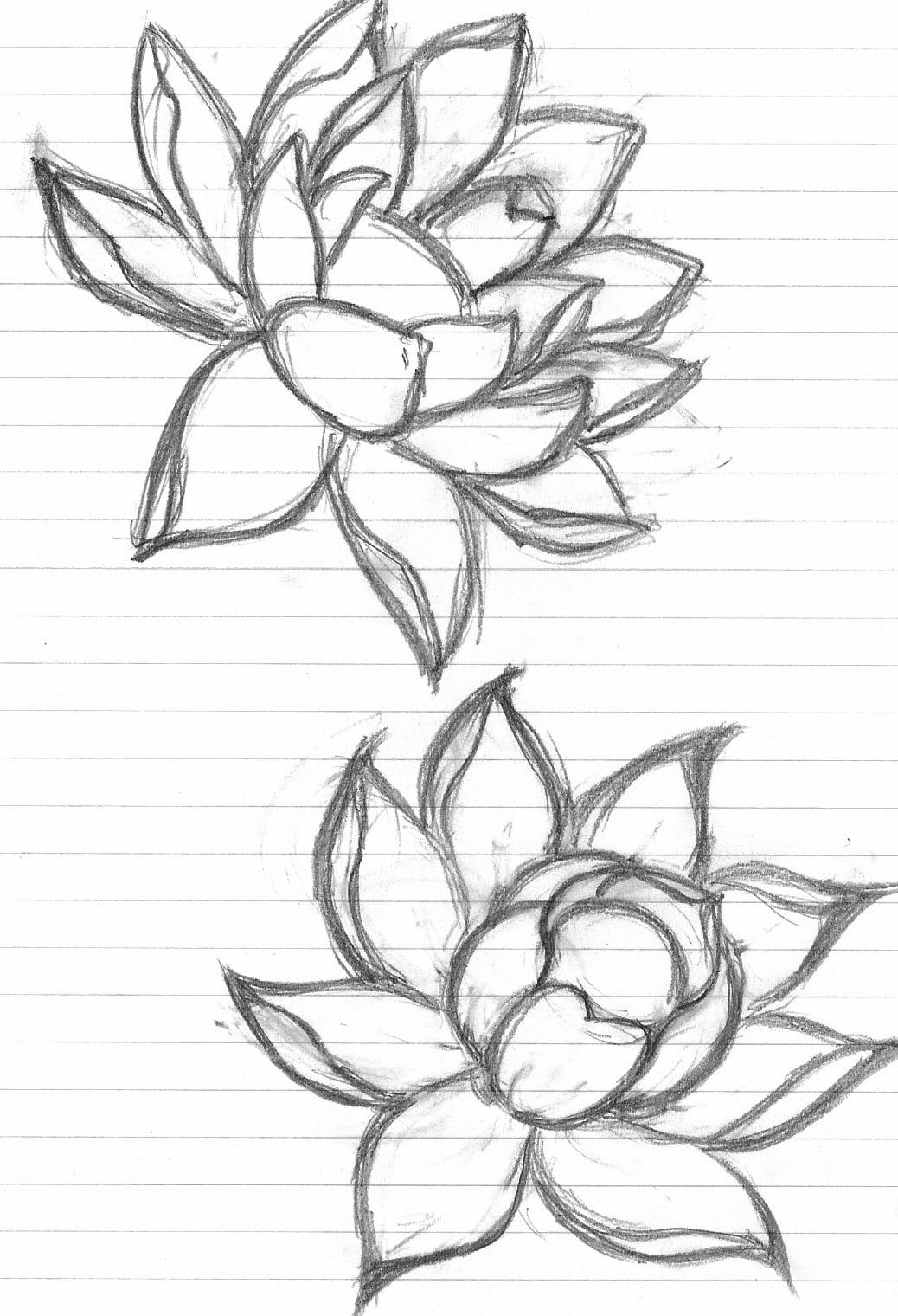 Desenhos Para Tatuagens De Flor De Lótus