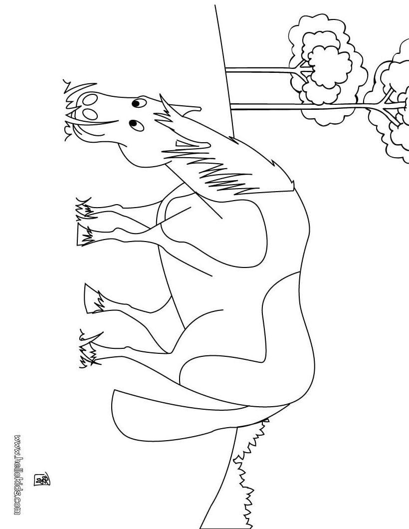 Desenhos Para Colorir De Um Lindo Cavalo Para Colorir Online