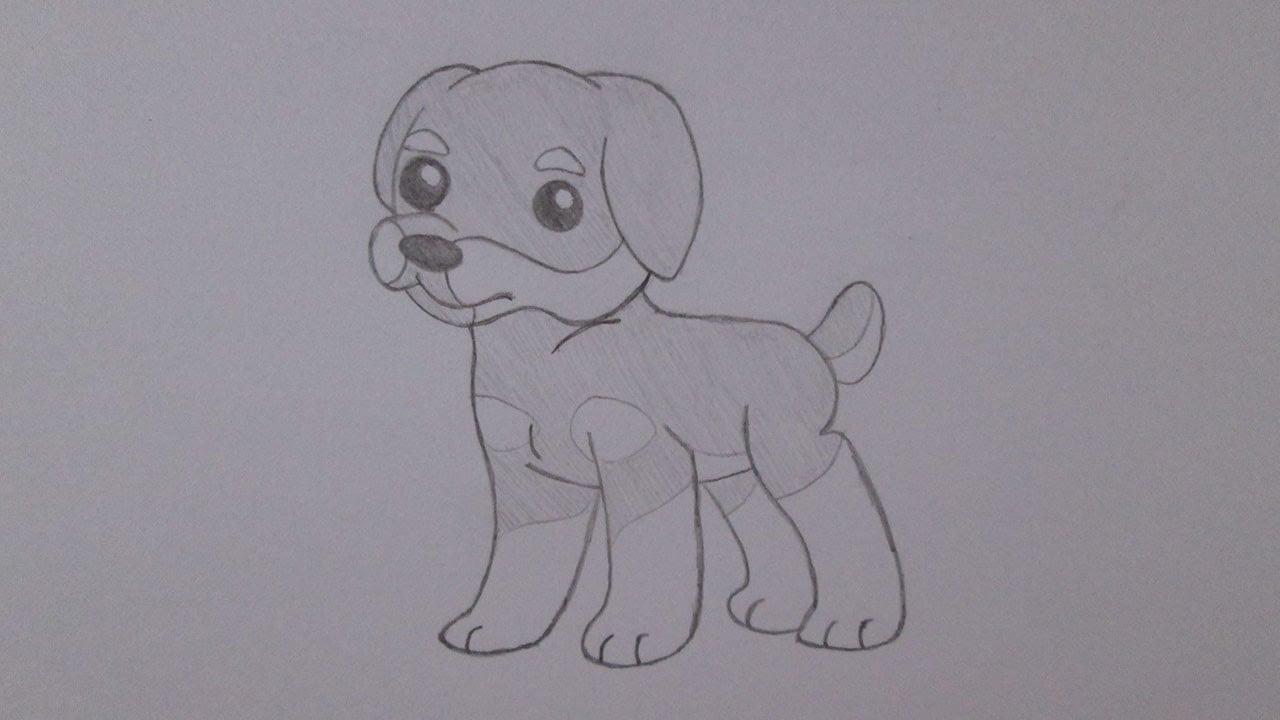 Como Desenhar Um Cachorro Rottweiler