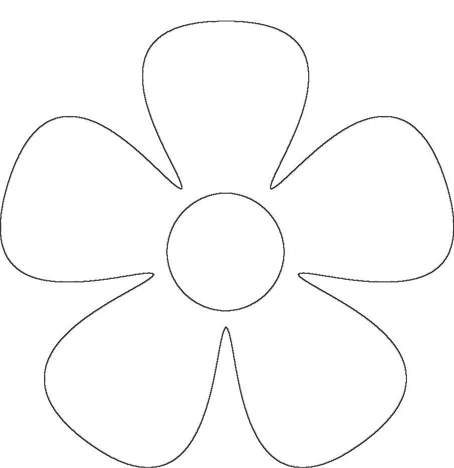 Escolha Ótimos Moldes De Flores Em Eva Para Imprimir