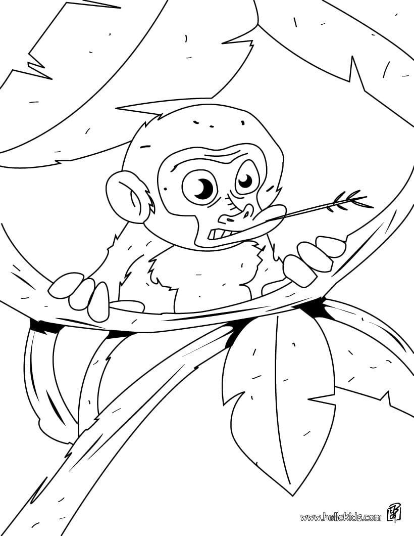 Macaco   Desenhos Para Colorir, Desenhos Para Crianças, Jogos