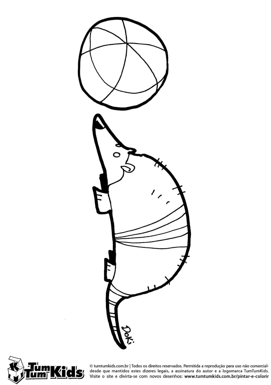 Desenho Tatu Bola