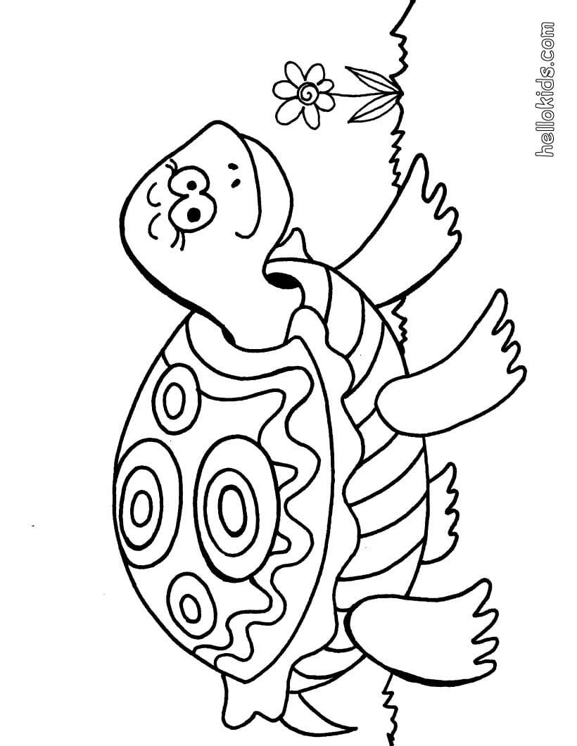 Desenhos Para Colorir De Uma Tartaruga Fofa Para Pintar