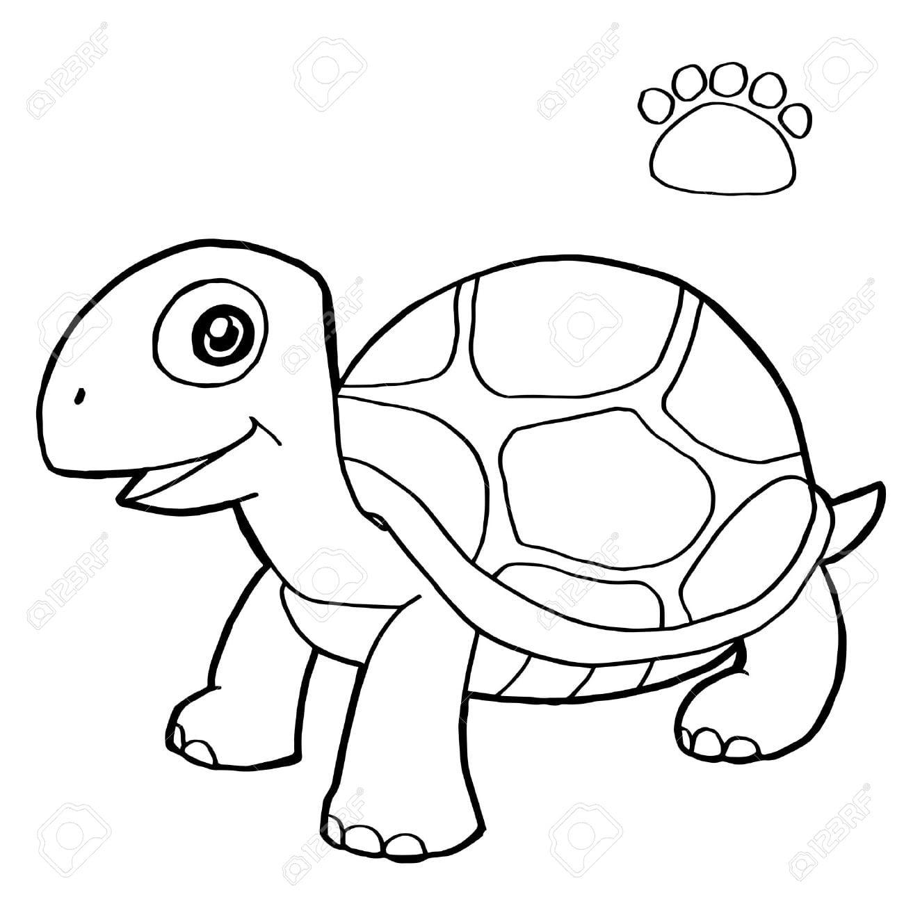Cópia Da Pata Com Tartaruga Desenhos Para Colorir Vector Royalty