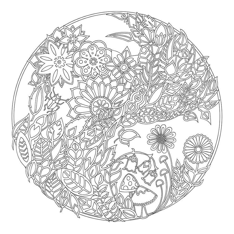 Desenhos Para Imprimir E Colorir + Adulto