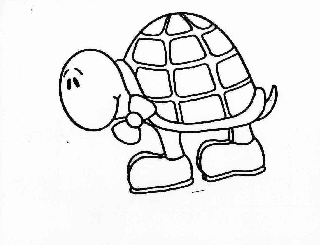 Desenho De Tartaruga Brincando Para Colorir