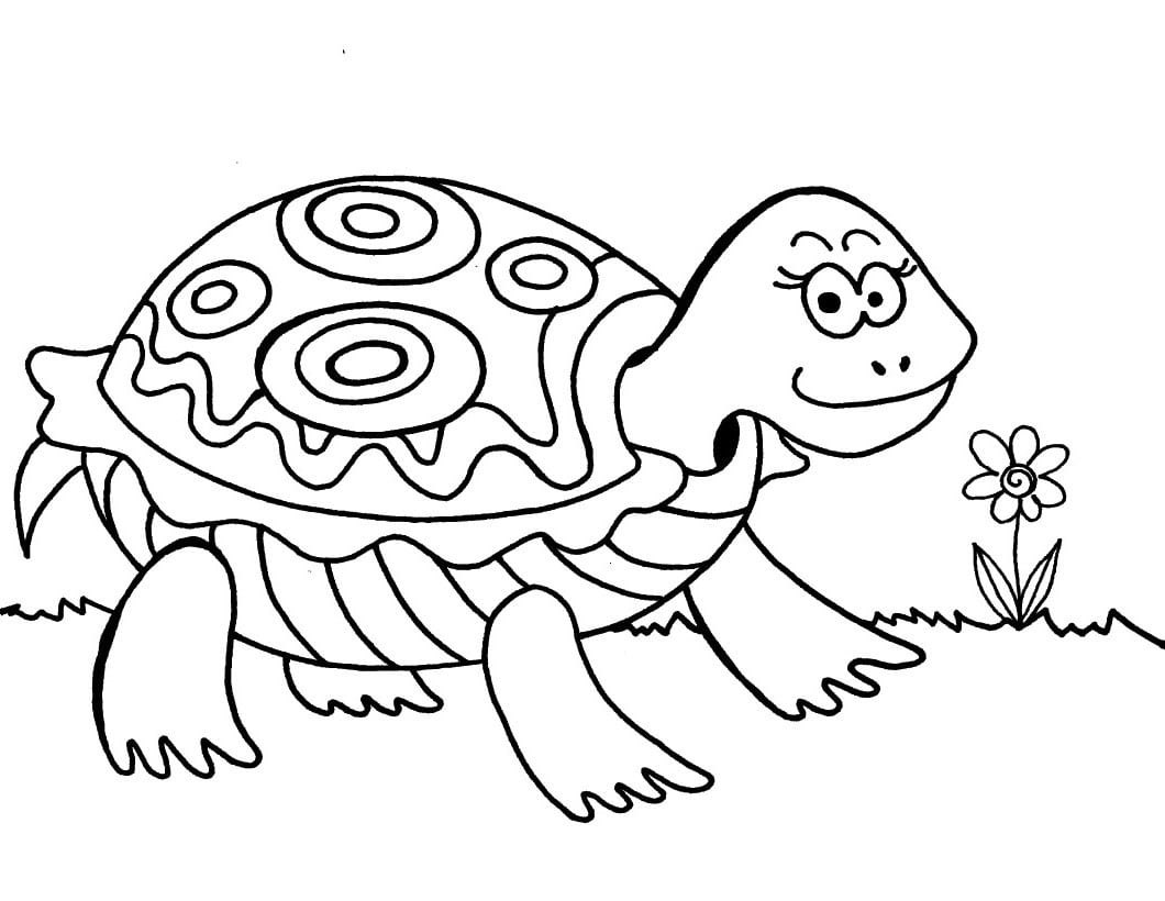 Desenho De Tartaruga Para Imprimir