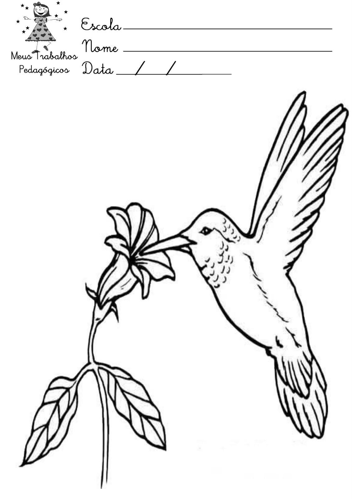 Desenho Sobre Primavera