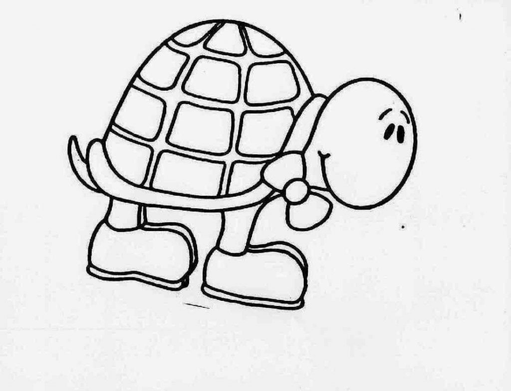 Desenhos De Tartaruga Para Colorir E Imprimir