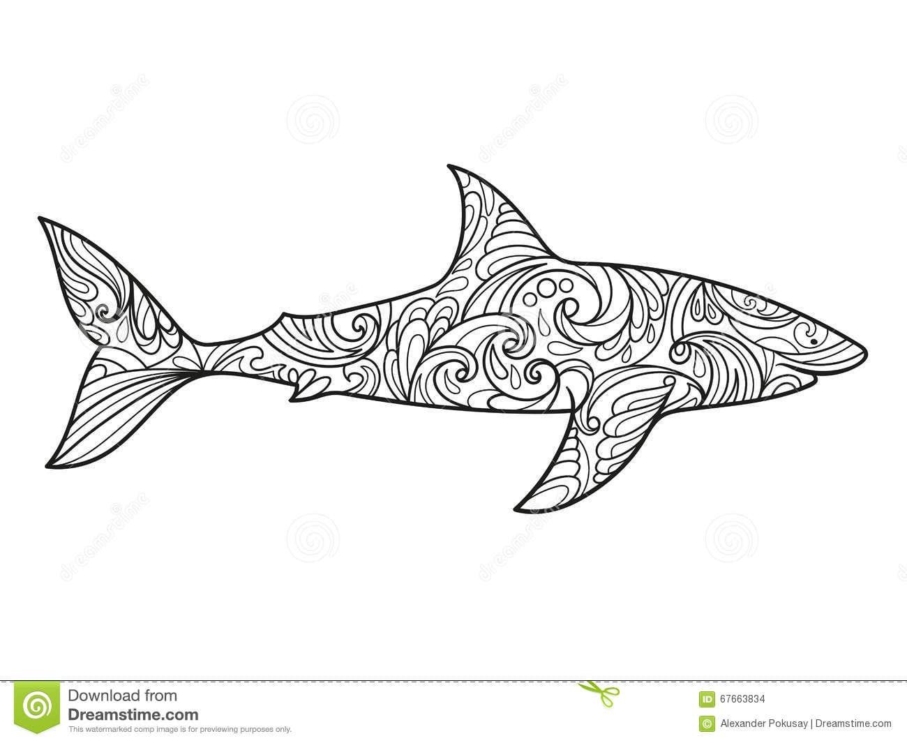 Livro Para Colorir Do Tubarão Para O Vetor Dos Adultos Ilustração