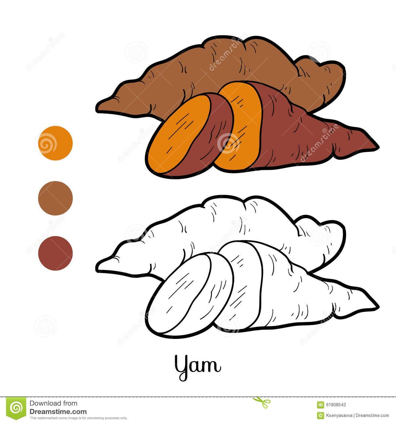 Livro Para Colorir Para Crianças  Frutas E Legumes ( Batata Doce