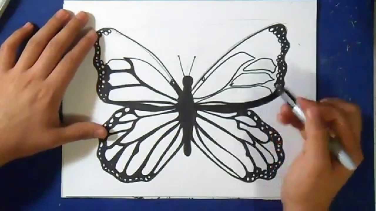 Como Desenhar Uma Borboleta