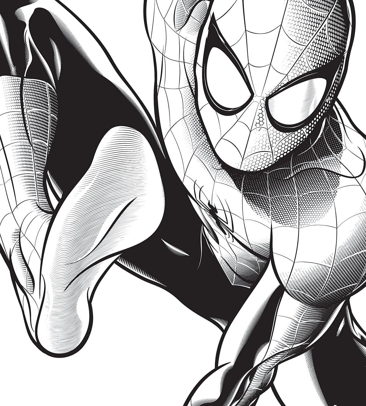Homem Aranha Desenhos Para Colorir Do Filme  Imagens Online Pintar