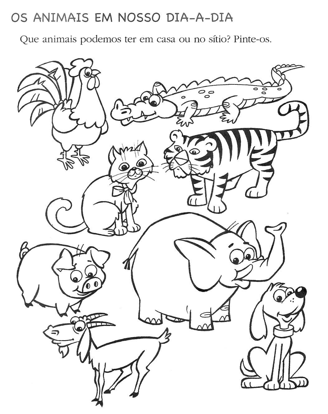 Imagens De Animais Dom Sticos E Selvagens Para Colorir – Pampekids Net