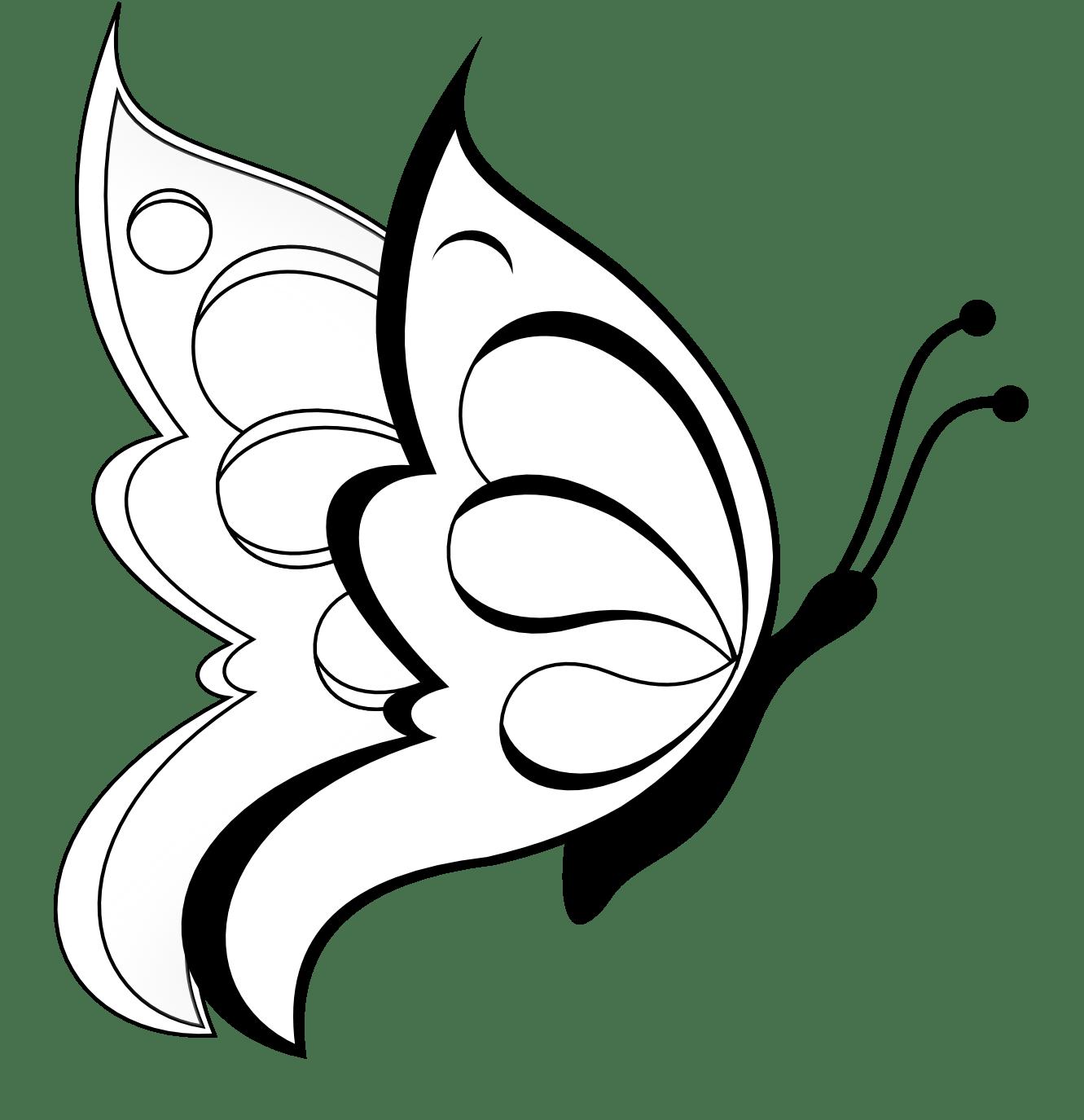 Desenhos De Borboleta Para Imprimir
