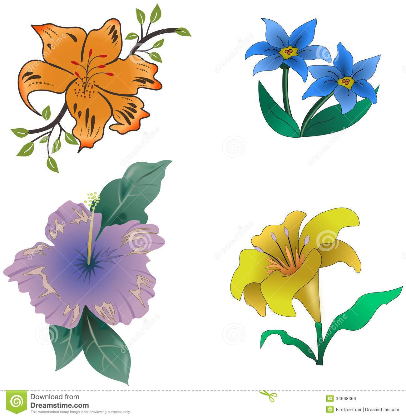 Datoonz Com = Rosas E Flores Coloridas ~ Várias Idéias De Design