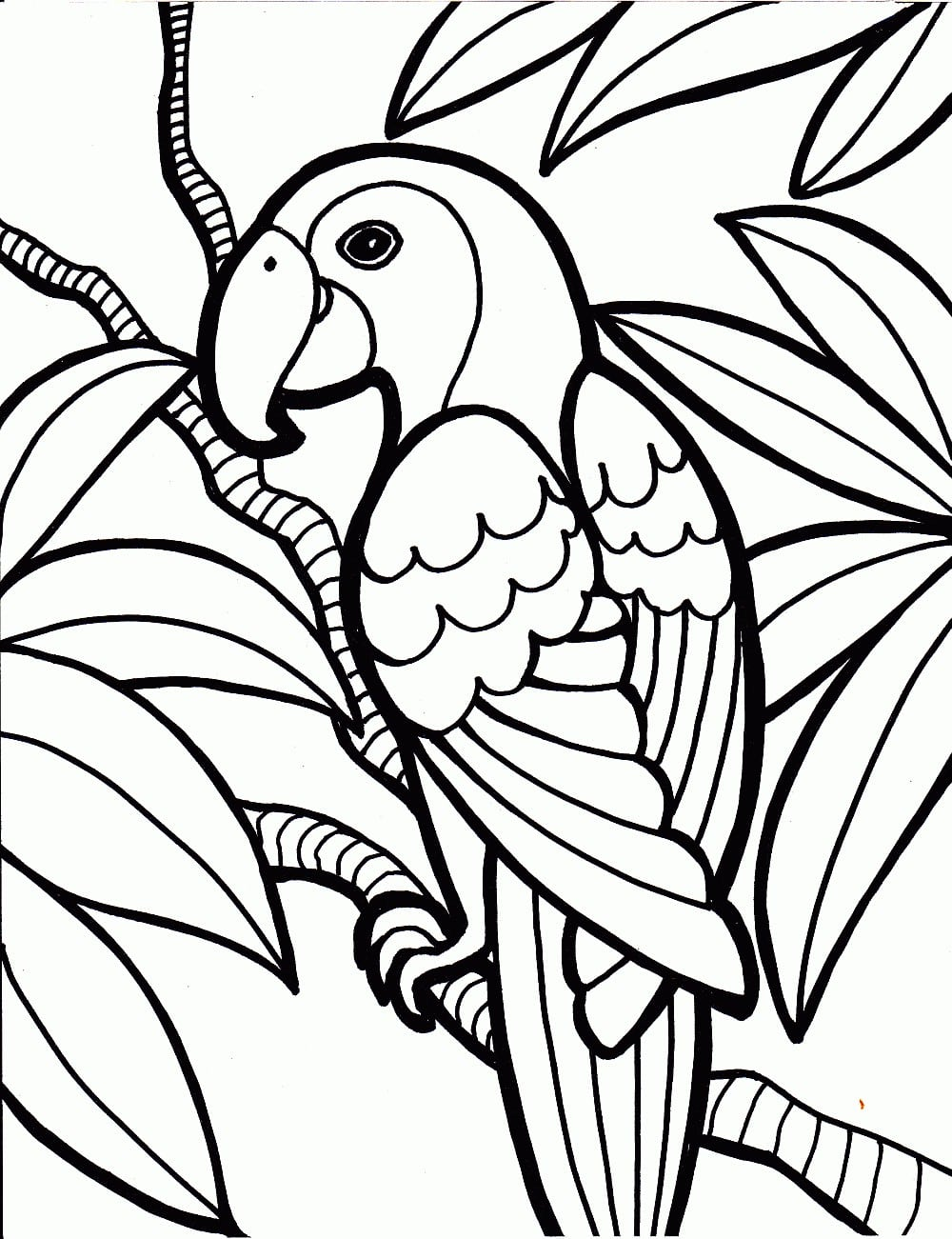 Imagens De Papagaios E Araras Para Imprimir E Colorir 8