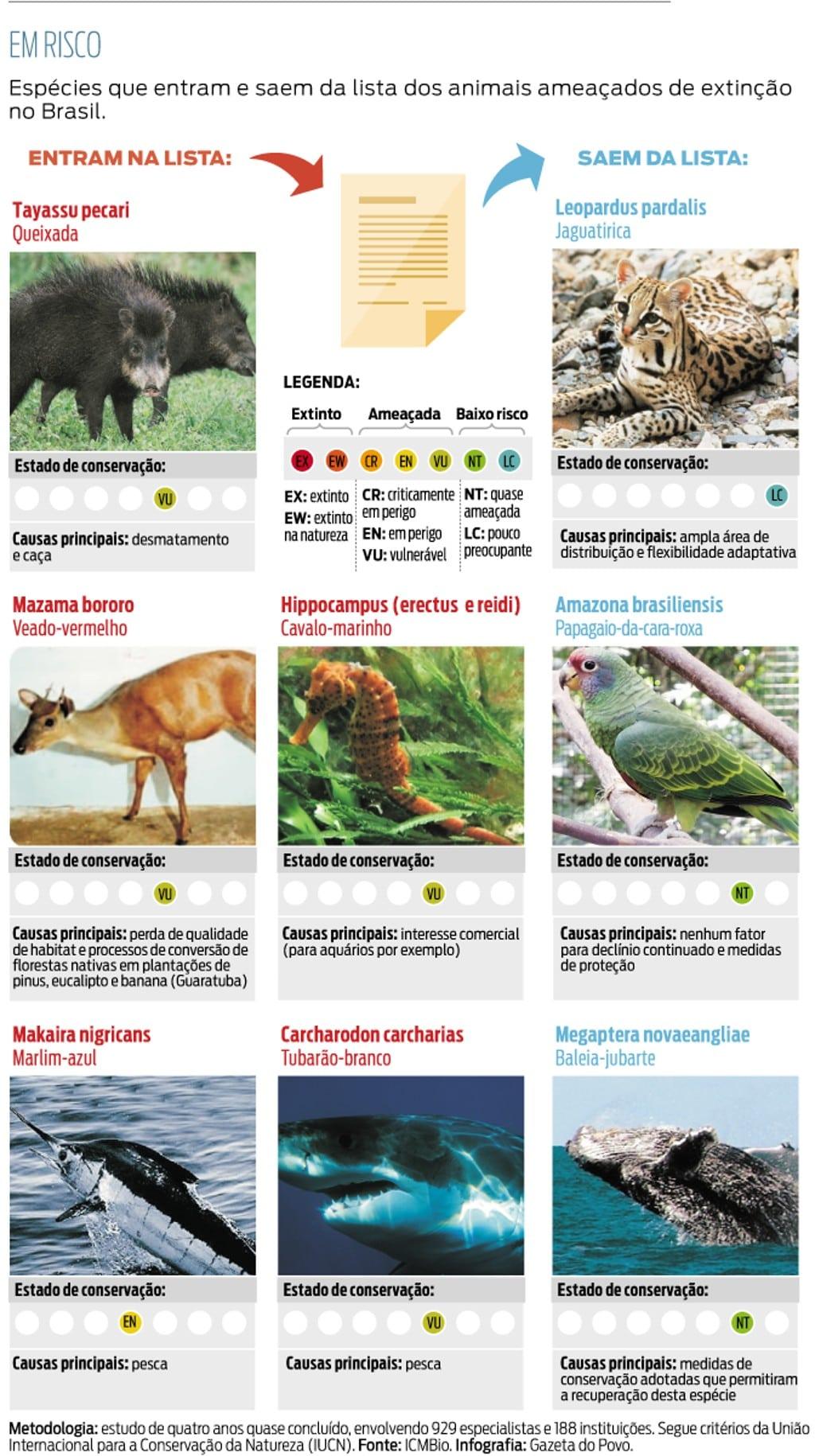 Paraná Tem 78 Animais Ameaçados