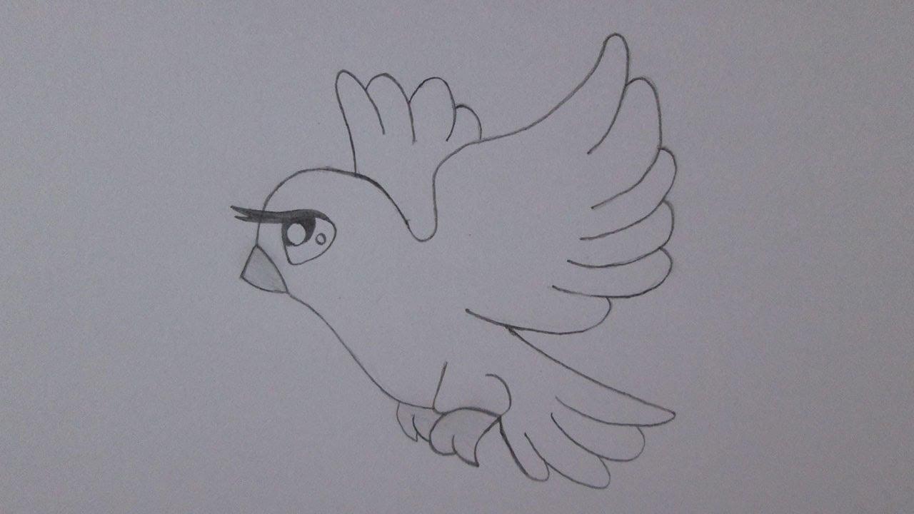 Como Desenhar Uma Pomba