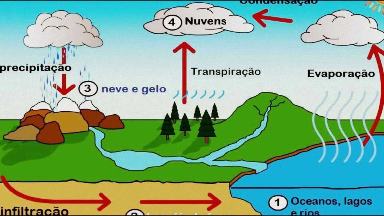 O Ciclo Da Água Wmv
