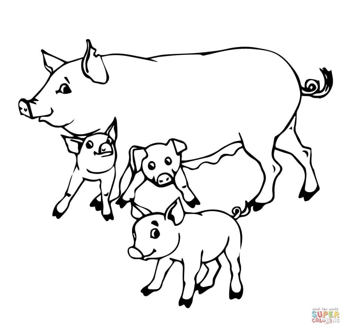 Desenho De Mãe Porca E Bebês Porquinhos Para Colorir