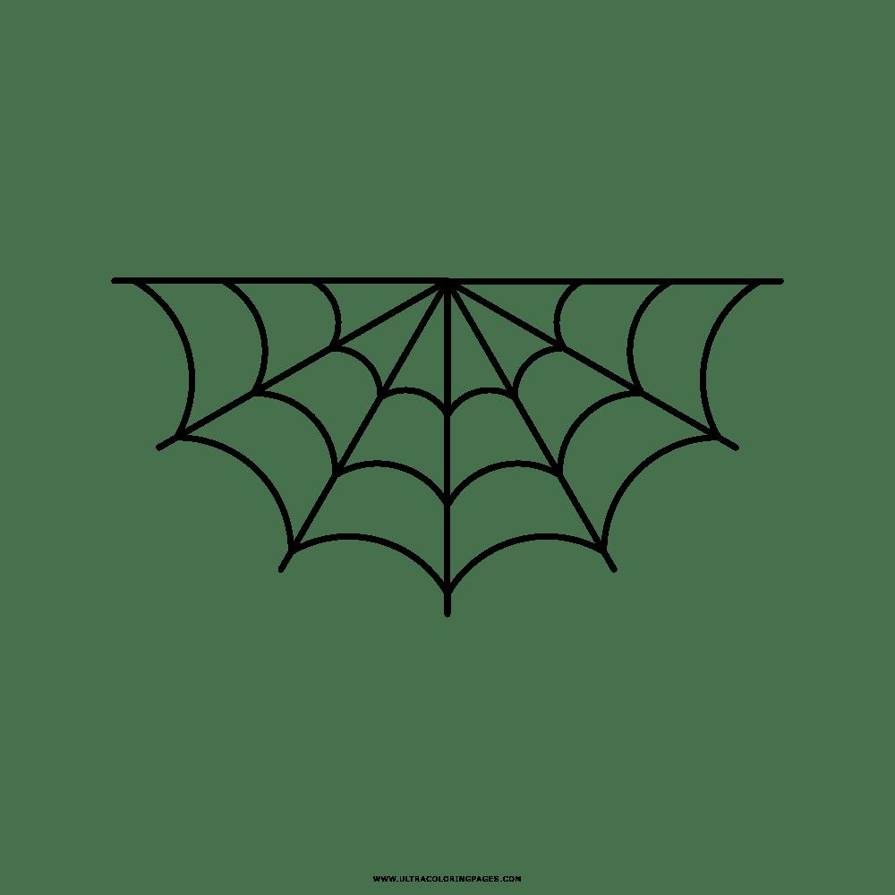 Teia De Aranha Desenho Para Colorir